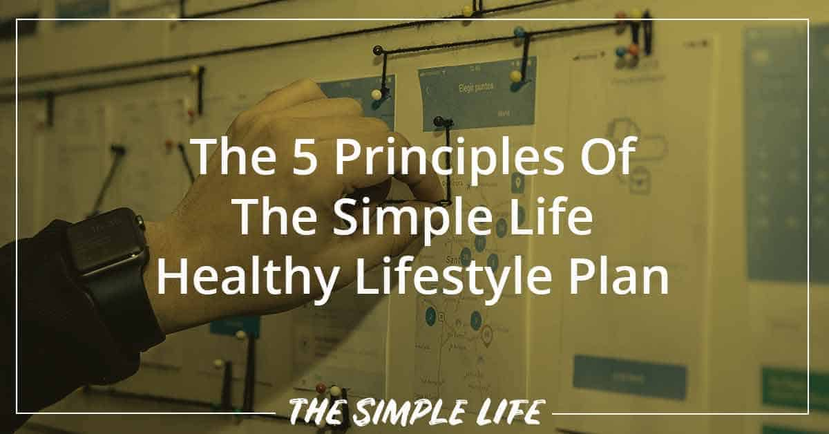 The 5 Principles Of The Simple Life Healthy Lifestyle Plan